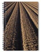 Califronia, View Spiral Notebook