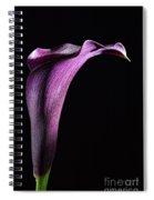 Calla 2 Spiral Notebook