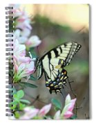 Callaway Butterfly Spiral Notebook