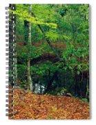 Calm Stream Through Beech And Magnolia Spiral Notebook