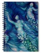Calming Current 2 Spiral Notebook