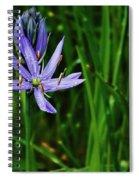 Camas Lily Spiral Notebook