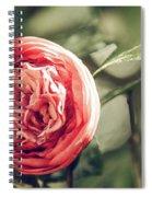 Camellia 3 Spiral Notebook