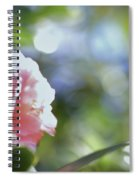 Camellia And Early Light Spiral Notebook