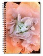 Camellia Bloom Spiral Notebook