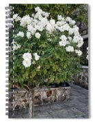 Camellia Blossoms Spiral Notebook