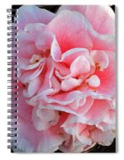 Camellia Flower Spiral Notebook
