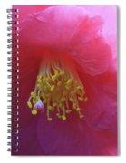 Camellia Japonica Spiral Notebook