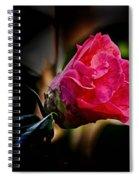 Camellia Silhouette  Spiral Notebook