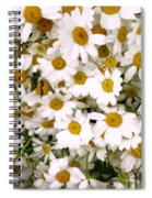 Camomiles Spiral Notebook