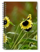 Camouflaged Perch Spiral Notebook