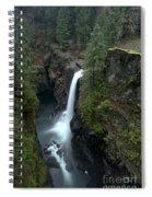 Campbell River Rain Forest Falls Spiral Notebook