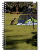 Camping With Swamp Wallaby Spiral Notebook