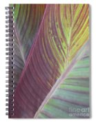 Can-can Spiral Notebook