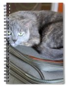 Can I Come With You Spiral Notebook