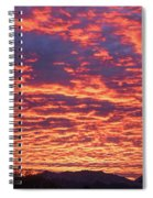 Can You Believe This One Spiral Notebook