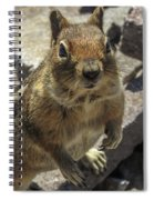 Can You Spare Me Some Food? Spiral Notebook