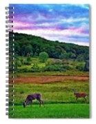 Canaan Valley Evening Impasto Spiral Notebook