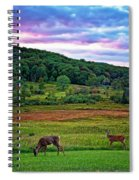 Canaan Valley Evening Spiral Notebook