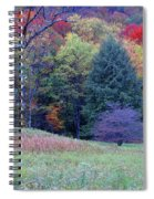 Canaan Valley In Vivid Spiral Notebook