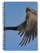 Canada Goose Coming In For A Landing Spiral Notebook