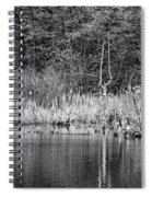 Canada Goose Couple Bw Spiral Notebook