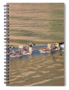 Canada Goose Family Spiral Notebook