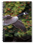 Canada Goose Landing Spiral Notebook