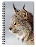 Canada Lynx Up Close Spiral Notebook