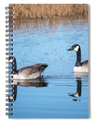 Canadian Geese Couple Spiral Notebook