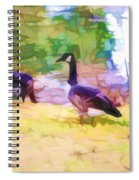 Canadian Geese In The Park 3 Spiral Notebook