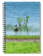 Canadian Geese - Wichita Mountains - Oklahoma Spiral Notebook