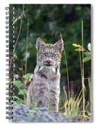 Canadian Lynx Spiral Notebook