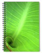 Canalilly Ear Spiral Notebook