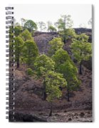 Canary Pines Nr 2 Spiral Notebook