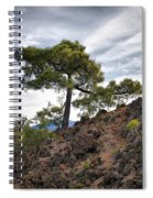 Canary Pines Nr1 Spiral Notebook