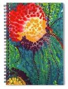 Candid Burst Spiral Notebook