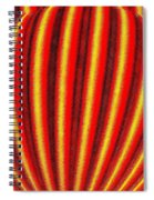 Candid Color 9 Spiral Notebook