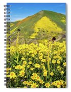 Candle Light In The Temblors - Superbloom 2017  Spiral Notebook