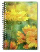 Candy Corn 2770 Idp_2 Spiral Notebook