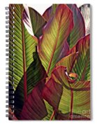 Canna Leaves 2   Spiral Notebook
