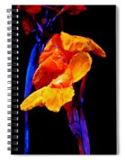 Canna Lilies On Black With Blue Spiral Notebook
