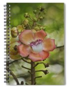 Cannonball Blossom Spiral Notebook