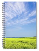 Canola Blue Spiral Notebook