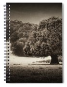 Canopy Spiral Notebook