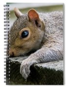 Can't Take Much More Of This Heat Spiral Notebook