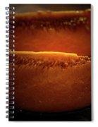 Cantaloupe Spiral Notebook
