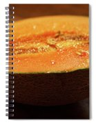 Canteloupe 2 Spiral Notebook