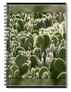 Canvas Of Cacti Spiral Notebook