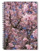 Canvas Of Pink Blossoms Spiral Notebook